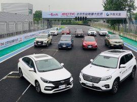 ترتيب السيارات الصينية الأكثر مبيعًا فى مصر خلال يناير 2021 (جراف)